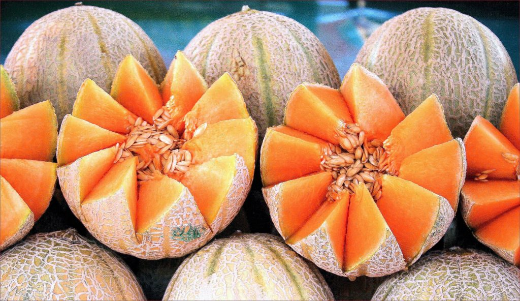 cantaloupe, muskmelon, difference between, mary beth clark