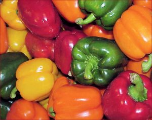 sweet pepper, bell peppers, italian pepper recipes, mary beth clark