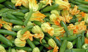 zucchini, summer squash,