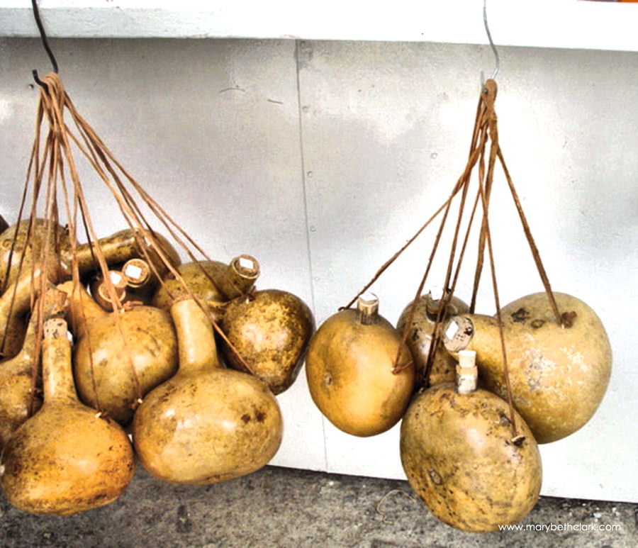Greece - Crete - Dried Gourds